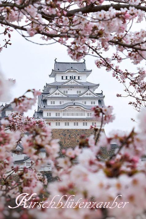 Bildergebnis für Kirschblütenzauber
