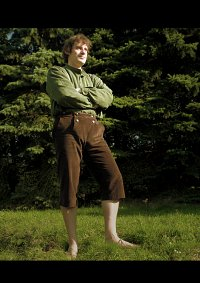 Cosplay-Cover: Frodo (Version Auenland - Grünes Hemd)