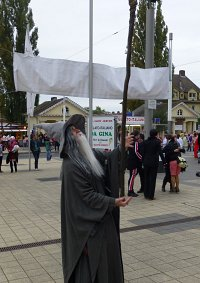 Cosplay-Cover: Gandalf