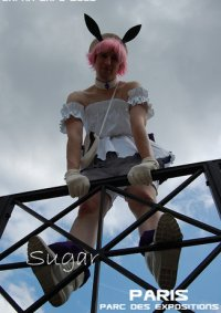 Cosplay-Cover: Sugar