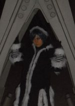 Cosplay-Cover: Nr. 6- Zexion (Christmastown)