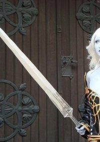 Cosplay-Cover: Dark Elf