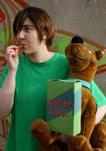 Cosplay-Cover: Shaggy Rogers