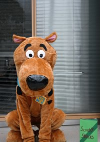 Cosplay-Cover: Scooby Doo