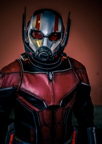 Cosplay-Cover: Ant-Man and the Wasp (2018)