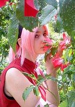 Cosplay-Cover: Sakura Haruno - Shippuden