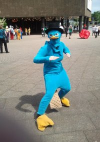 Cosplay-Cover: Perry das Schnabeltier