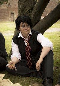 Cosplay-Cover: James Potter (Hogwarts Version)