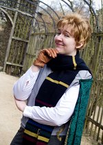 Cosplay-Cover: Gilderoy Lockhart