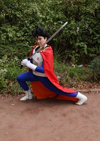 Cosplay-Cover: Vegeta (Vegeta-sei Version)