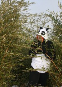 Cosplay-Cover: Panda (Genma XD)