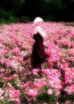 Cosplay-Cover: Haruno ◘ Sakura [Dress]