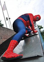Cosplay-Cover: Spider-Man (Movie Version)
