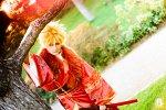 Cosplay-Cover: Naruto Uzumaki [Kimono]
