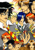 Cover: Harry Potter und die Kammer der Liebe ~YAOI~