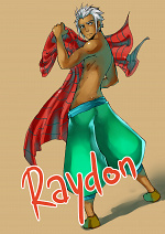 Cover: Raydon - PmC 2013