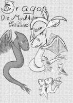 Cover: =╬ Dragon ╬= Die Macht der Ketten