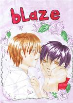 Cover: blaze