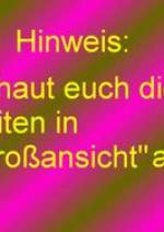 """Cover: Herr der Ringe, eine Parodie zu """"Die Gefährten"""""""