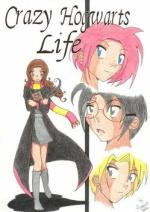 Cover: Crazy Hogwarts Life