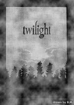 Cover: Twilight - Die Bis(s)Geschichte