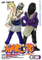 Cover: Naruto in Lebensgefahr