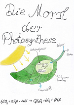 Cover: Die Moral der Photosynthese