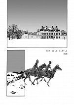 Cover: The Cold Castle