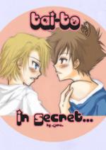 Cover: In Secret [TaiTo]