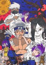 Cover: Shinobi No Hitsugi - Das Grab der Ninja ( Kakashi X Anko)