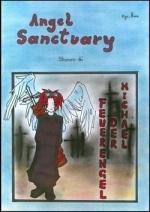 Cover: Angel Sanctuary