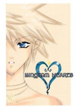 Cover: Kingdom Hearts - another side, another story