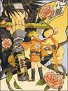 Cover: Sensei nii-san