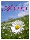 Cover: Achtzehn