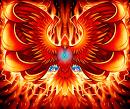 Cover: The Phoenix