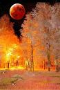 Cover: Der Herbst an dem die Sonne dunkel wurde.