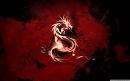 Cover: Der einsame Dragon Slayer