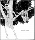 Cover: Summer Sanctuary