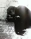 Cover: Rainy Days never stays