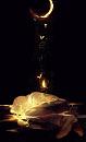 Cover: My light