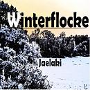 Cover: Winterflocke