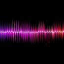 Cover: Der Klang deiner Stimme