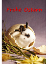 Cover: Frohe Ostern