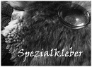 Cover: Spezialkleber