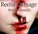 Cover: Recoil Damage