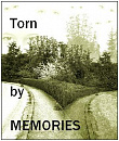 Cover: Torn by Memories