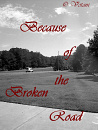 Cover: Because of the Broken Road