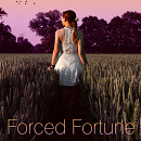 Cover: Forced Fortune [in Überarbeitung]