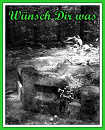 Cover: Wünsch Dir was