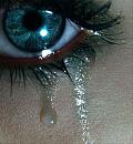 Cover: Tränen
